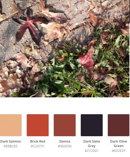 schemi di colore autunnali