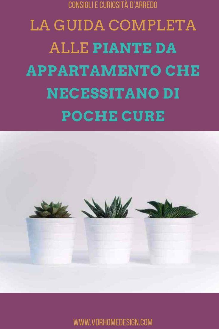 Piante Da Arredo Appartamento piante da appartamento che necessitano di poche cure la